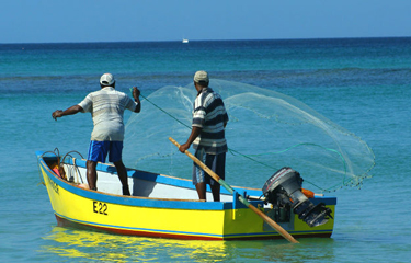 Early Warning System to Help Caribbean Fishermen Deal With Climate Change