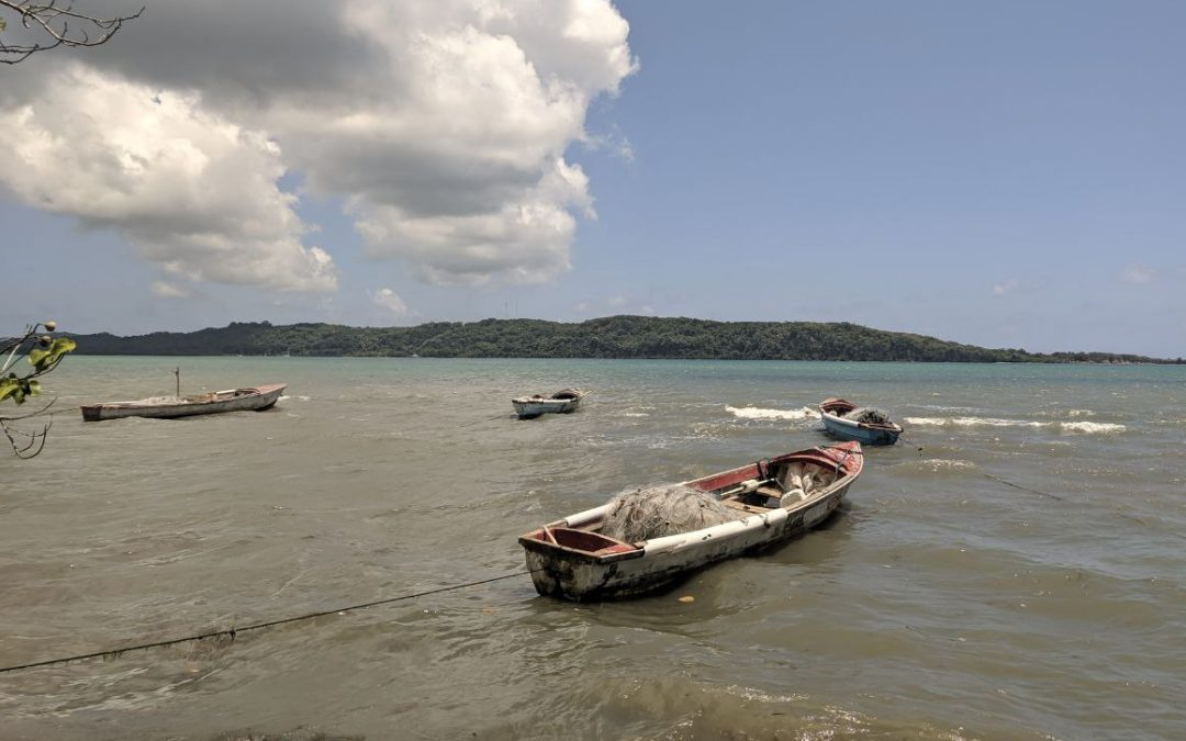 Climate Change: An Existential Threat to Fisheries