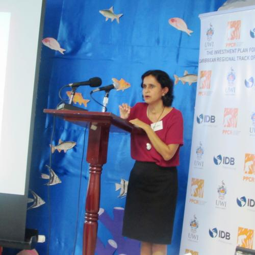 Dr-Susan-Singh-Renton-of-the-CRFM0A-addresses-participants-at-the-opening-of-the-FEWER-Training-Workshop-in-St-Vincent-and-the-Grenadines