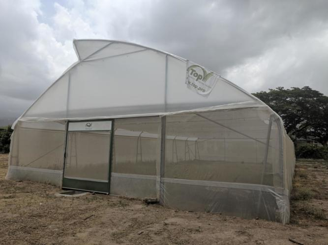 Weaning and Hardening Facility - CARDI Jamaica DTC